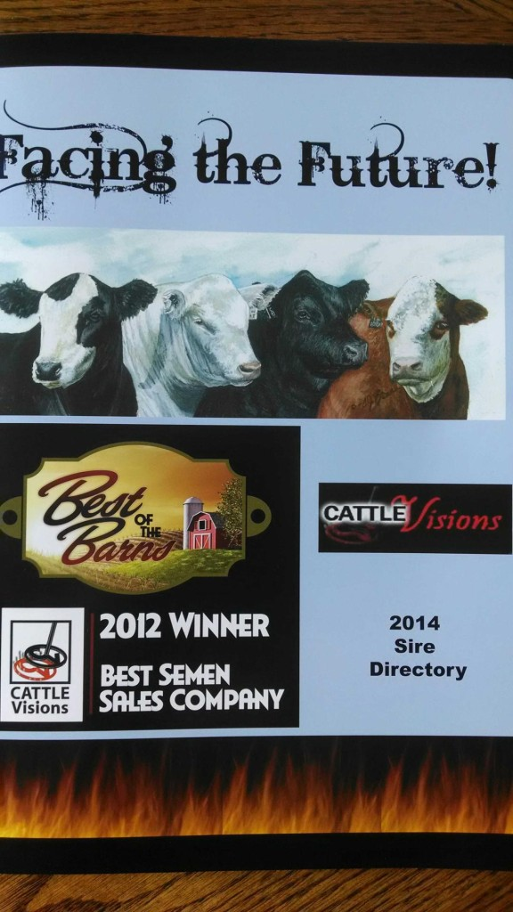 cattle visions