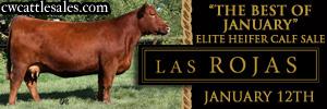 lasrojas_jan14