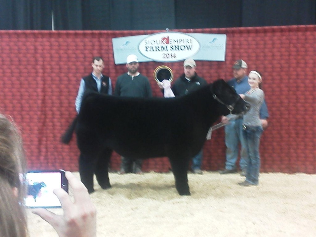 sioux falls - res steer