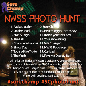 surechamp-photo-contest