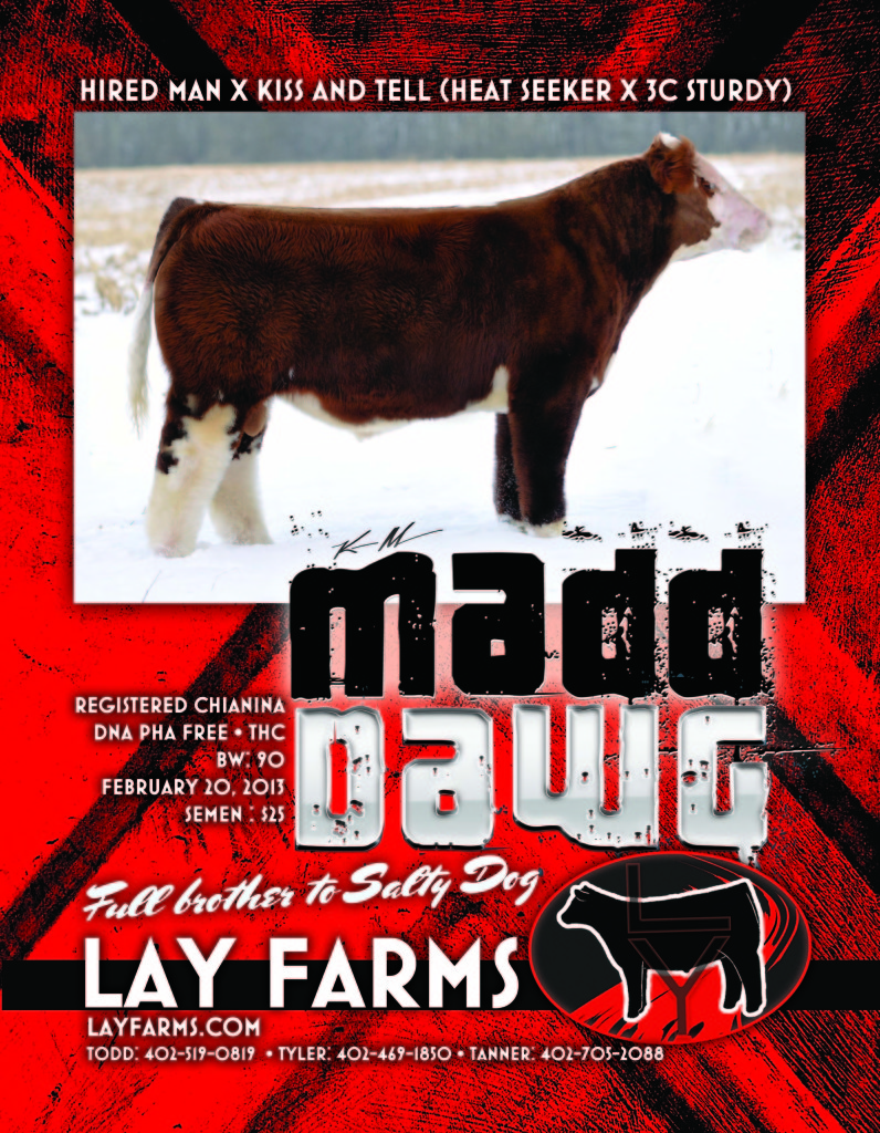 Lay-MaddDawg-March2014-Proof2