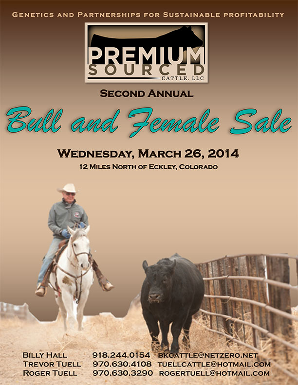 PremiumSourcedCattle-March2014