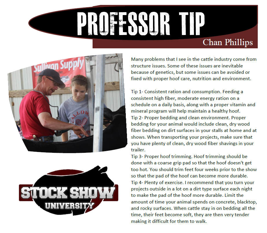 Chan Phillips Professor Tip
