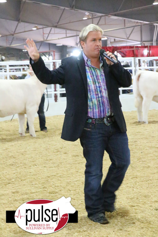 Tulsa Time At The Heifer Show The Pulse