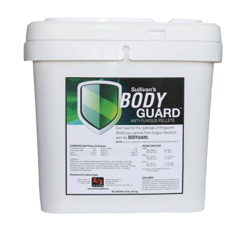 BG Body Guard