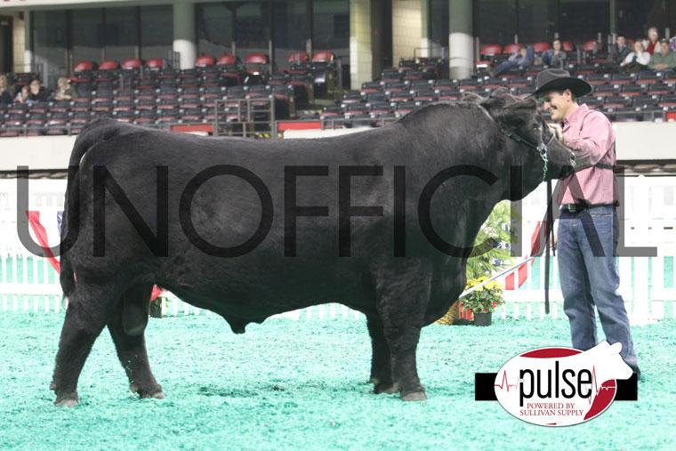 Champ_Balancer_Bull_Open
