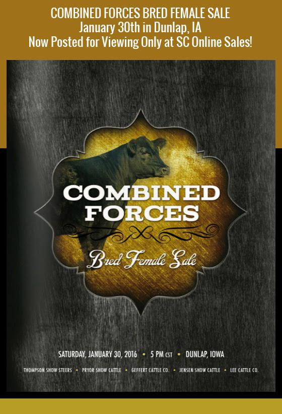 CombinedForces_eBlast