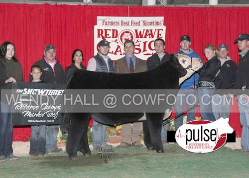 Res-Champion-Market-Beef-Julia-Dayton-WEB