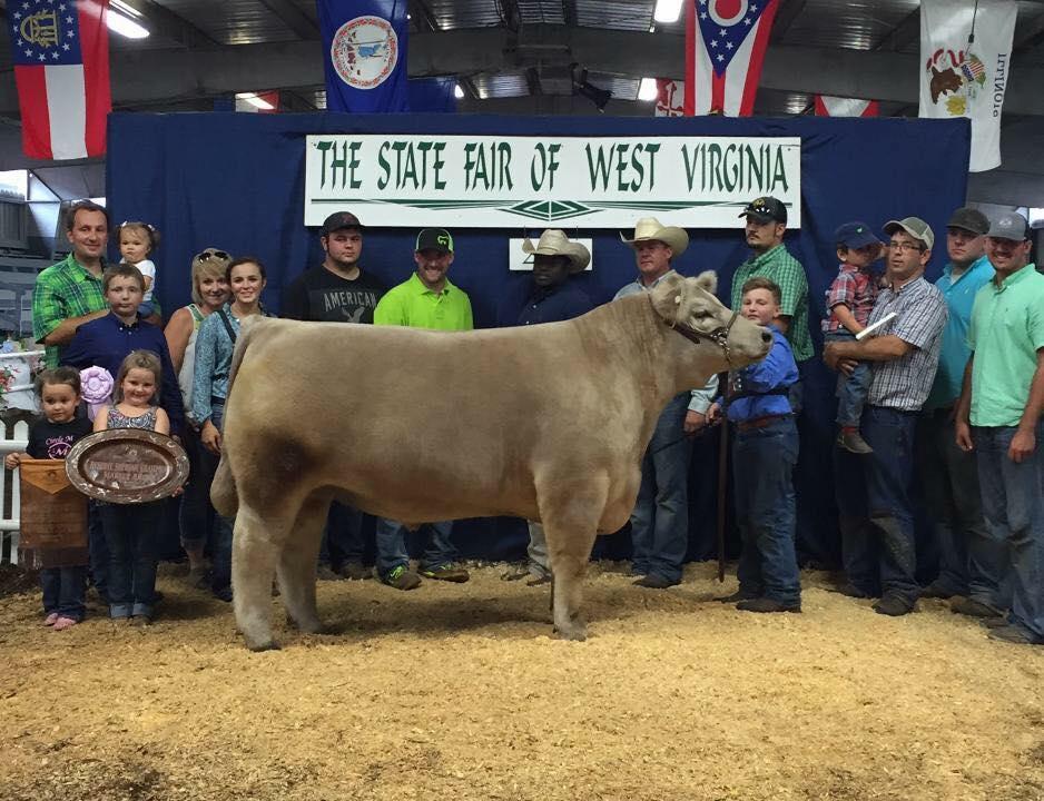 West Virginia State Fair | Steers – Sullivan Supply, Inc