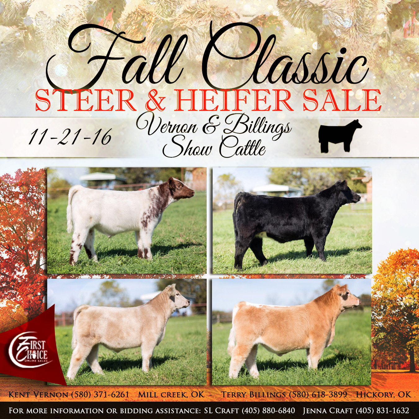 Fall Classic Steer & Heifer Sale | The Pulse