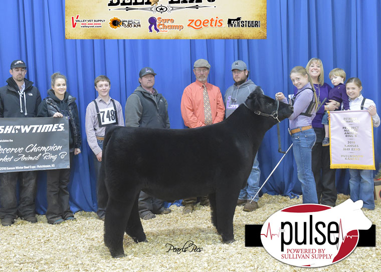 pulse_2016-kbe-res-supreme-champion-steer-ring-b-xbred-exhibited-by-lillie-skiles-ppw4516