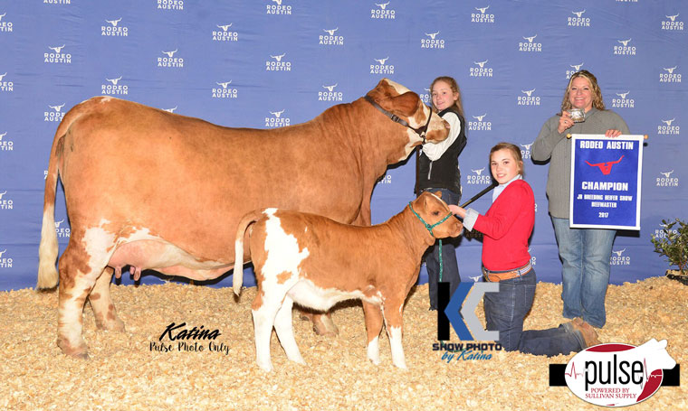Rodeo Austin Jr Beefmaster Show Champions The Pulse