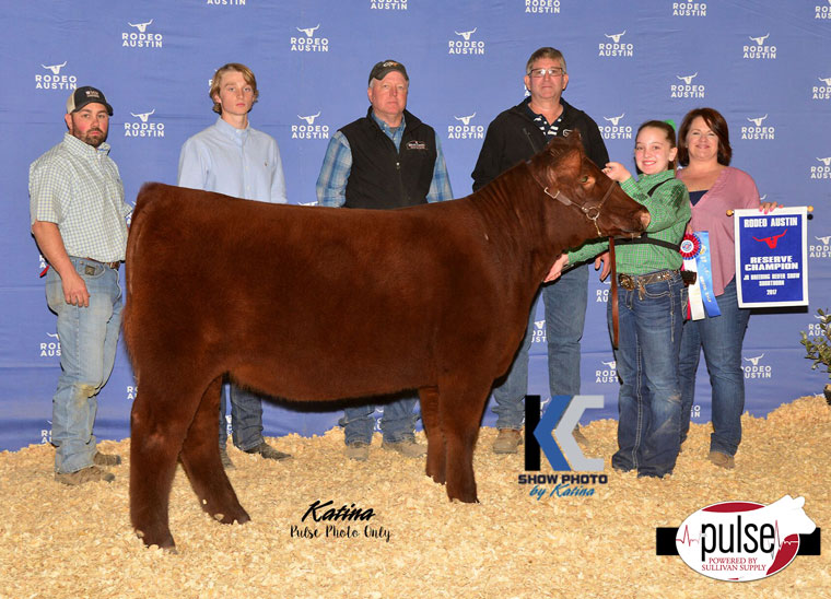 Rodeo Austin Jr Shorthorn Heifers Champions The Pulse