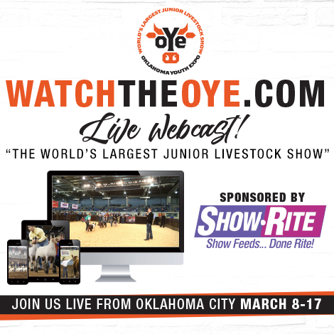 Oye live webcast the pulse the 2017 oye heifer show begins today and the show will be streamed by walton webcasting httpwatchtheoye junglespirit Image collections