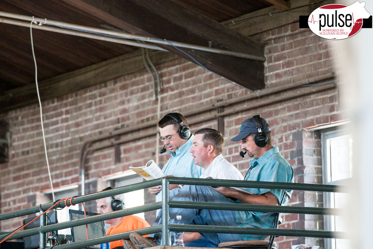 Feel good friday at the national junior angus show the pulse cody sankey kyle conley and jake scott took over the walton webcasting commentating today stay tuned for more coverage of the owned female show tomorrow junglespirit Image collections