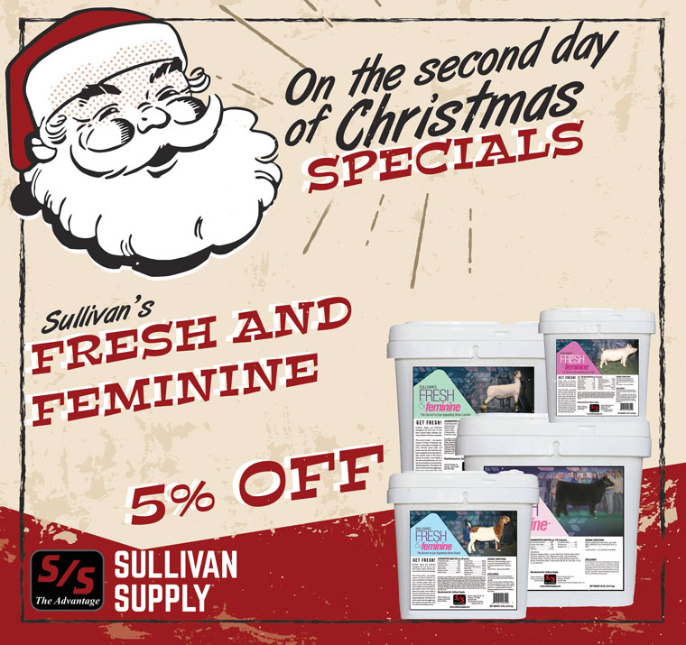 Second Day Of Christmas.On The Second Day Of Christmas Specials Sullivan Supply Inc