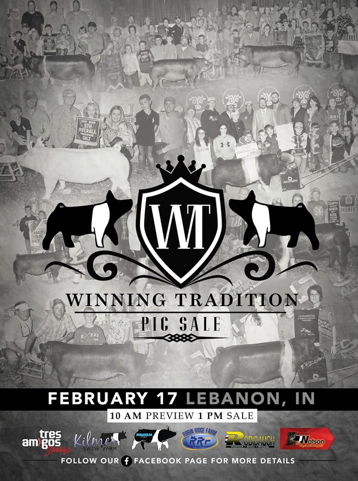 The winning tradition pig sale the pulse sale preview starts at 10am and will be broadcasted on walton webcasting with the sale to start at 1pm junglespirit Gallery