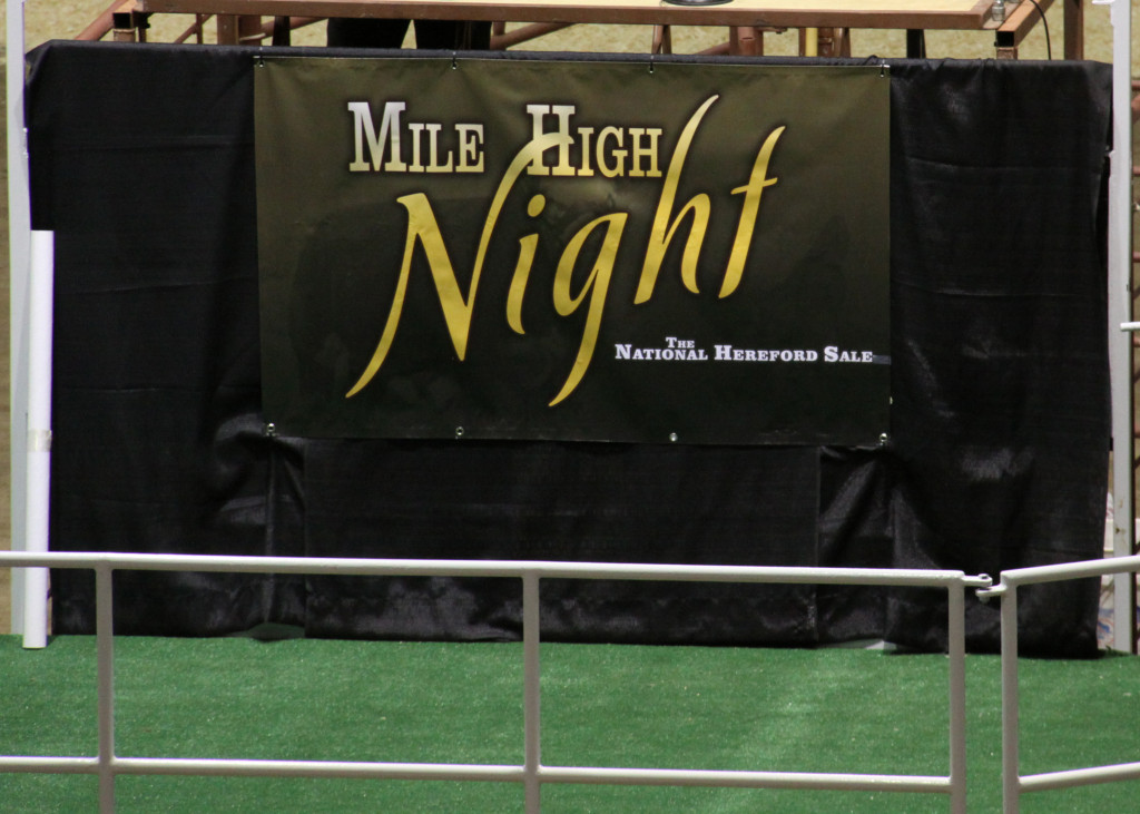 Mile High Night