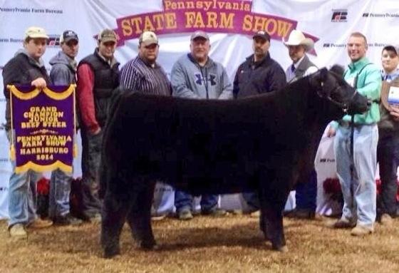 PAfarmshow_Grand Steer