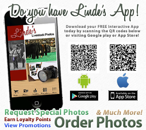 LindesApp_withQRcodes