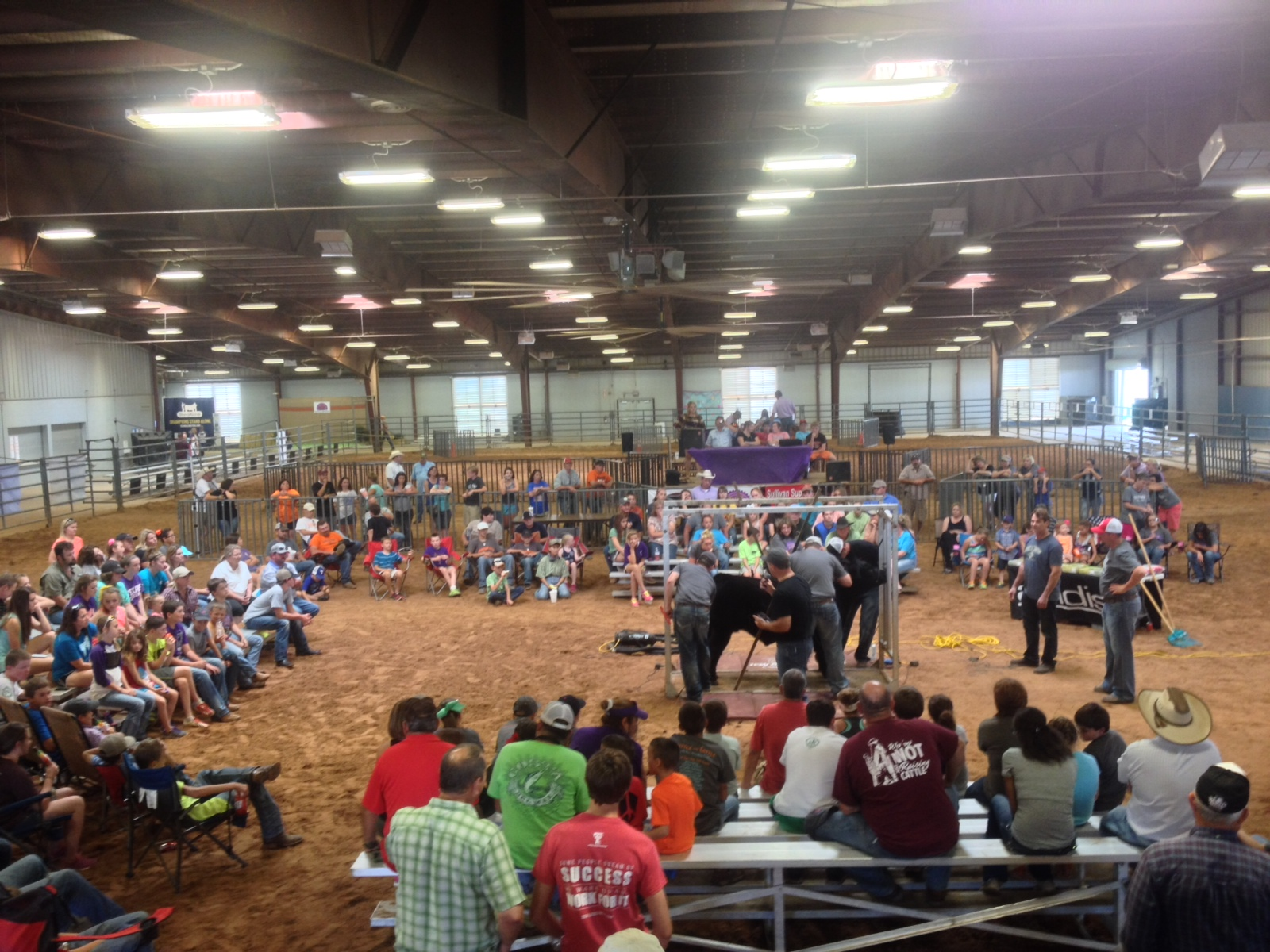 Stock Show Univeristy at Battle of Cattle – Belton, TX | The