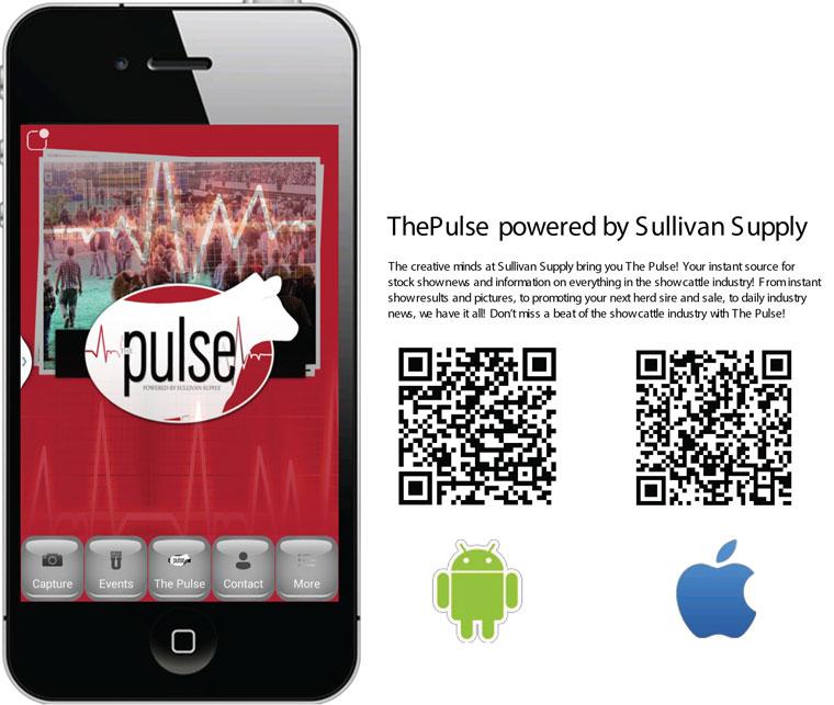 ThePulse_QRcodes