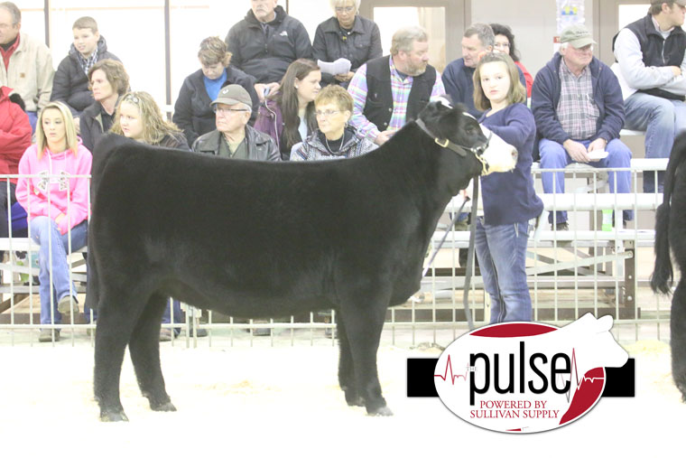 Reserve-Foundation-Simmental