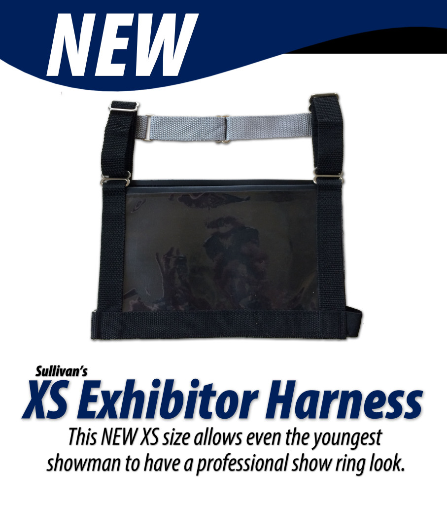 XS Harness Louisville