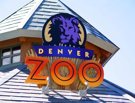 denver-zoo_1