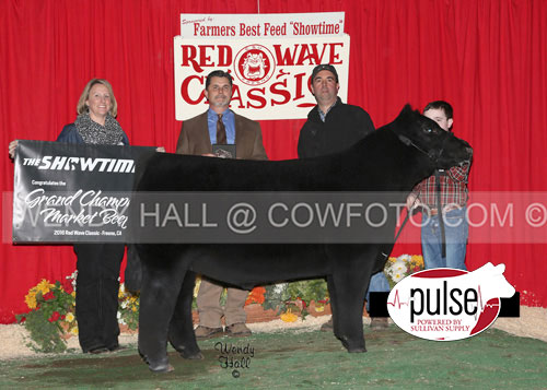 Grand-Champion-Market-Beef-Brody-Leo-WEB