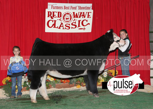 Res-Prospect-Heifer-Payton-Rodgers-WEB