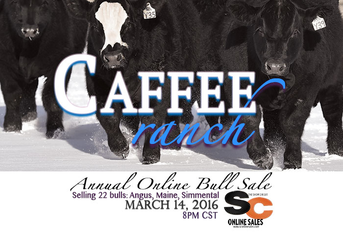 Caffee_pulsead_nobull
