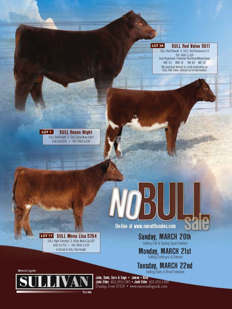 No Bull AMS Mailer 2016_LRes_Page_1