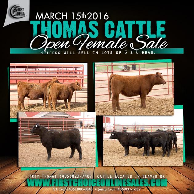 Thomas Cattle Eblast_mar15
