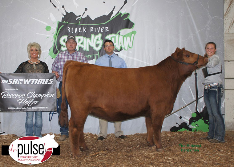 thumbnail_Champion-Red-Angus-and-Reserve-Supreme-Heifer
