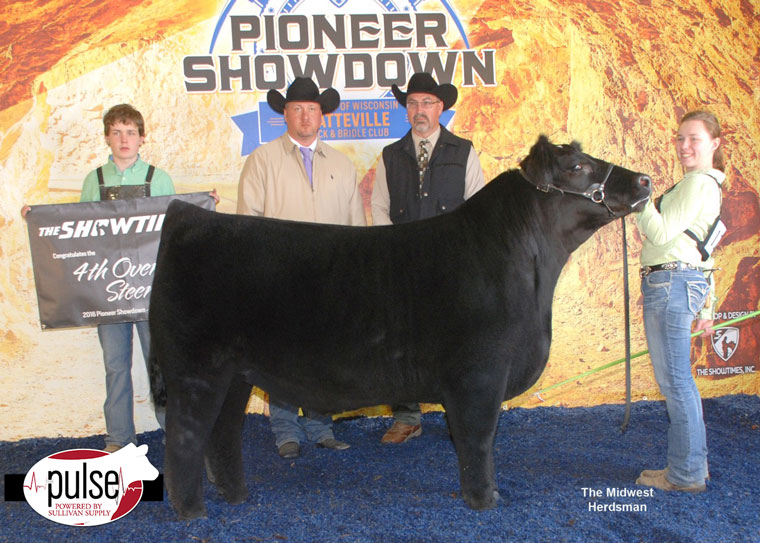 thumbnail_Champion-Simmental-Ring-One-and-Two-Fifth-Ring-One-Fourth-Ring-Two