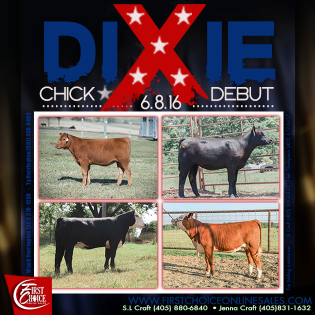 Dixie Chick Debut Sale