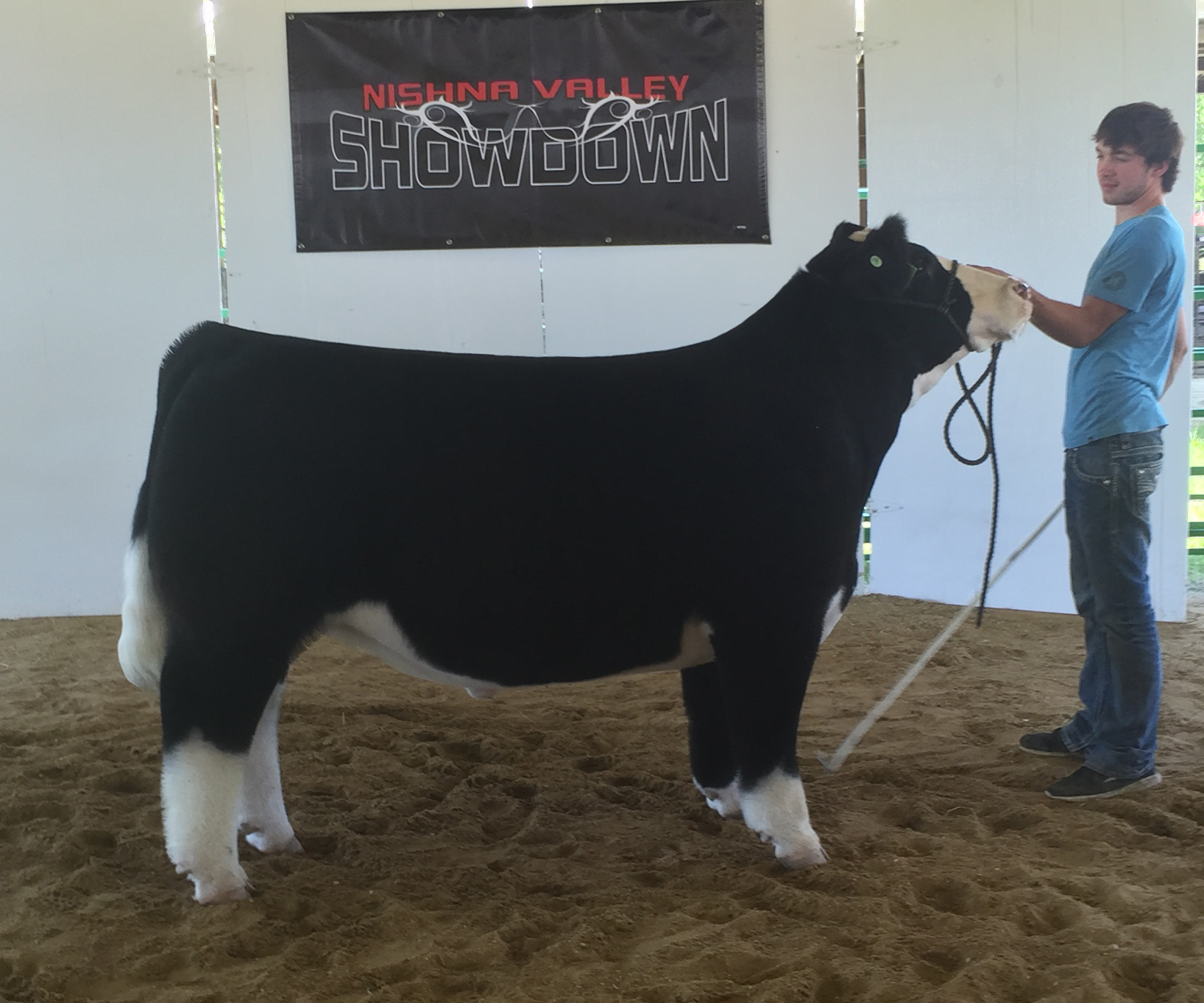 Nishna 4th Steer