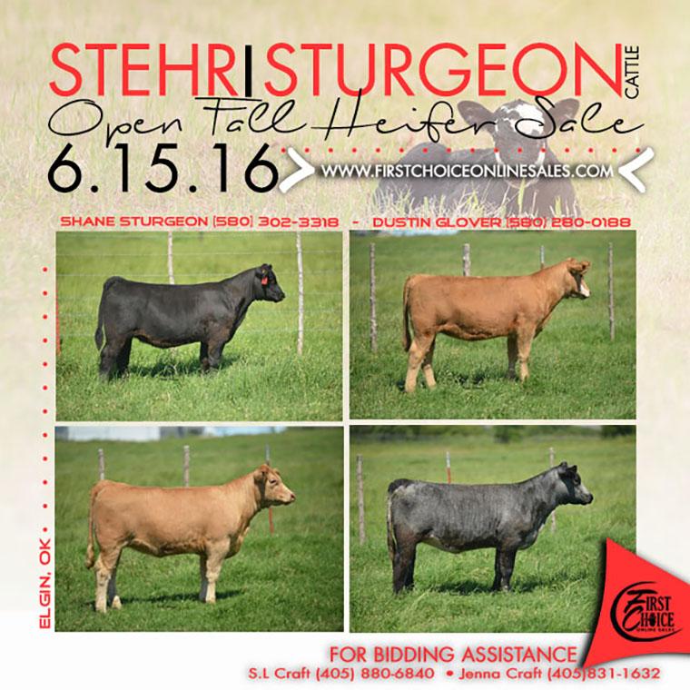 STURFEON eblast june 15 (1)