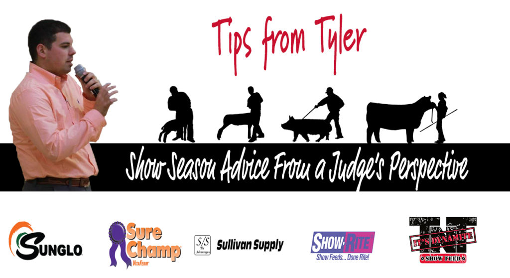 Show-Season-Advice-from-a-Judges-Perspective