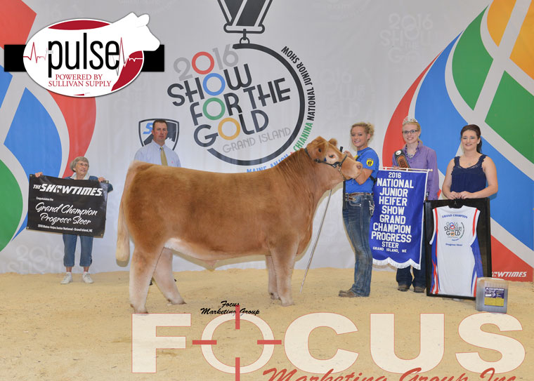 champion_maineprogressteer