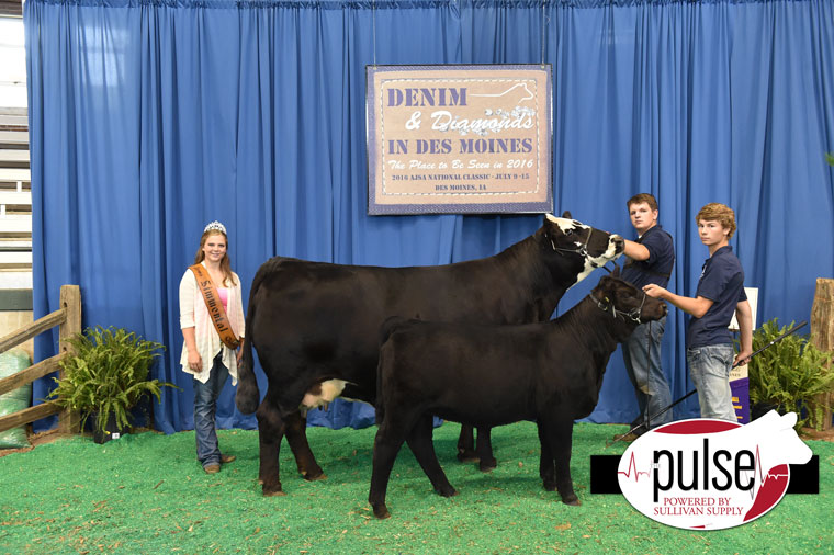 2016-AJSA-5th-Overall-Percentage-Cow-Calf-Pair-exhibited-by-Hunter-Aggen-PPW0497