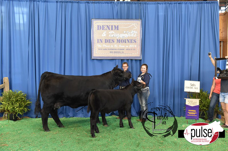 2016-AJSA-5th-Overall-Purebred-Cow-Calf-Pair-exhibited-by-Ella-Fischer-PPW4986