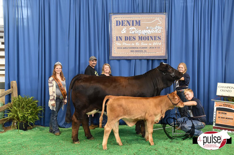 2016-AJSA-Grand-Champion-Simbrah-Cow-Calf-Pair-exhibited-by-Amelia-Stavinoha-PPW4611