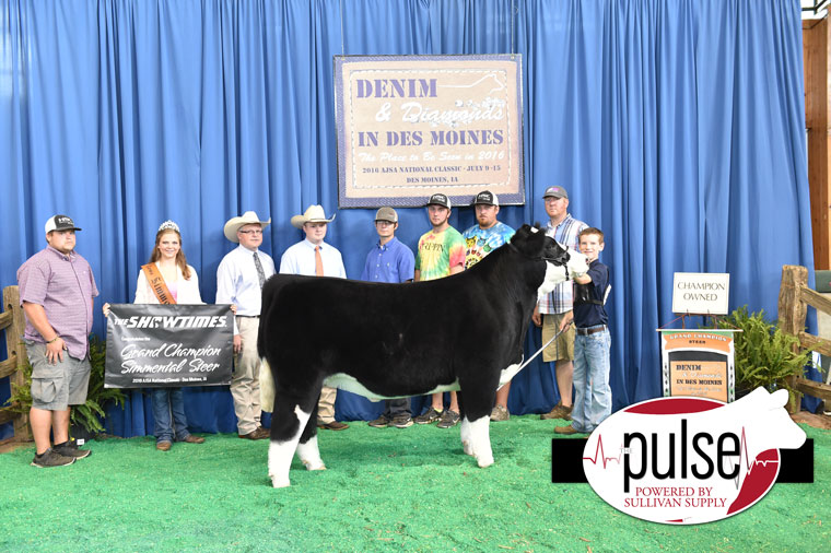 2016-AJSA-Grand-Champion-Steer-exhibited-by-Kinnick-Paulsen-PPW9634