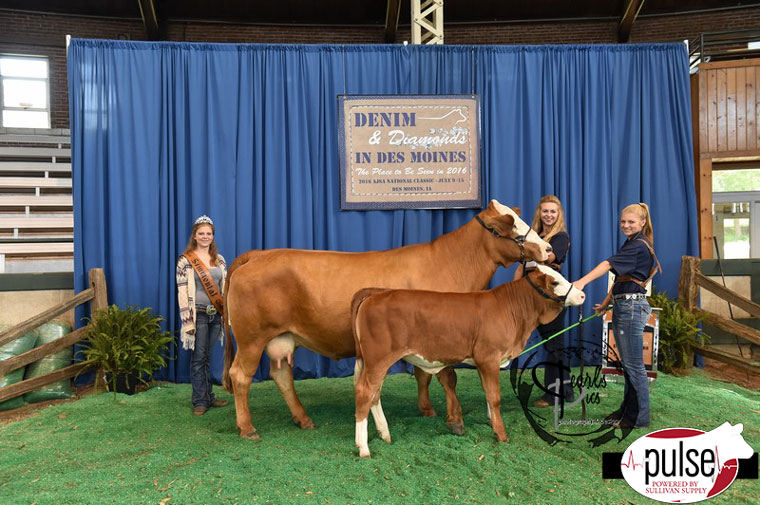 2016-AJSA-Reserve-Grand-Champion-Simbrah-Cow-Calf-Pair-exhibited-by-Jessica-Smith-PPW4583