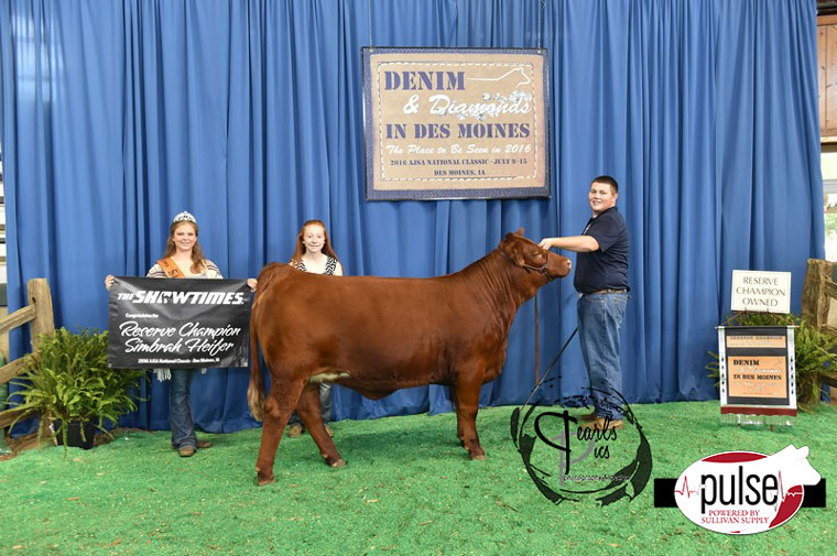 2016-AJSA-Reserve-Grand-Champion-Simbrah-Heifer-exhibited-by-Garrett-Stanfield-PPW4632