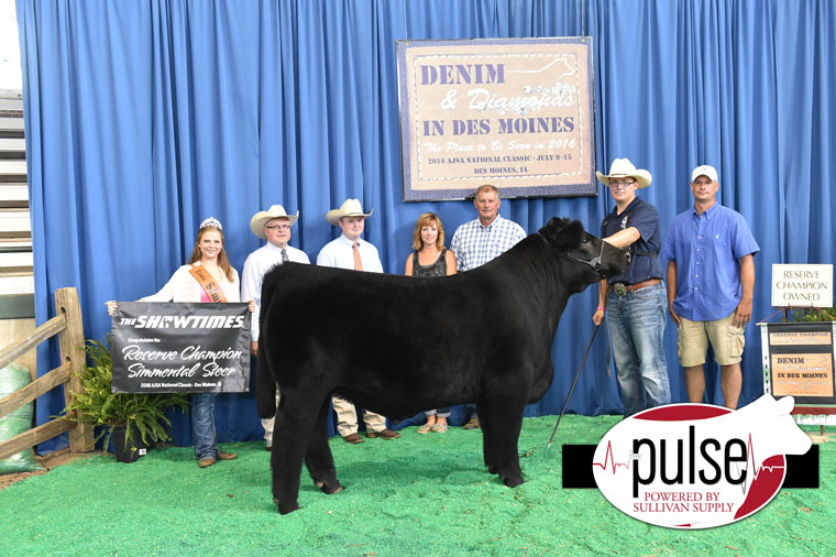 2016-AJSA-Reserve-Grand-Champion-Steer-exhibited-by-Adam-Eichacker-PPW9660