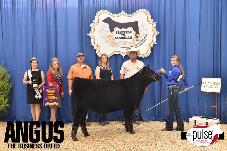 2016-NJAS-Champion-Owned-Heifer-Calf-2-Division_Class-5-exhibited-by-Syndey-Johnson-PPW6308
