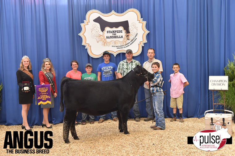 2016-NJAS-Champion-Owned-Heifer-Calf-3-Division_-Class-8-exhibited-by-Korey-Moser-PPW6952